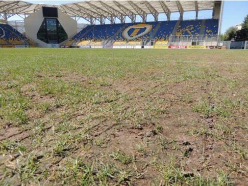 La pelouse du Petrolul avant de recevoir le Steaua